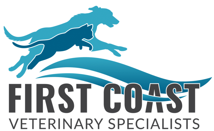 First Coast Veterinary Specialists and Emergency (FCVS)