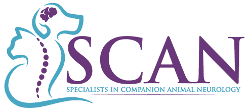 Specialists in Companion Animal Neurology (SCAN)