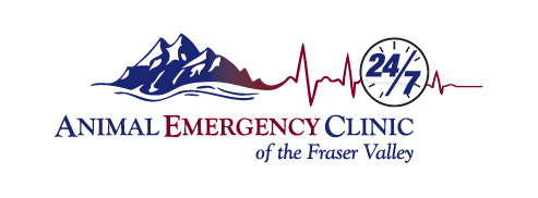 Animal Emergency Clinic of the Fraser Valley